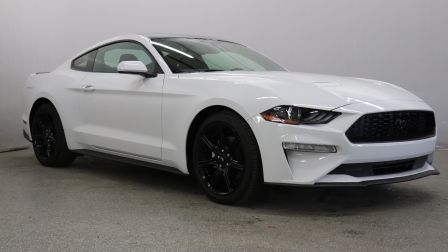 2019 Ford Mustang EcoBoost, Automatique, Apple Carplay                    à Saguenay